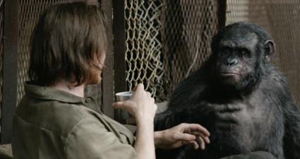 dawn-apes2