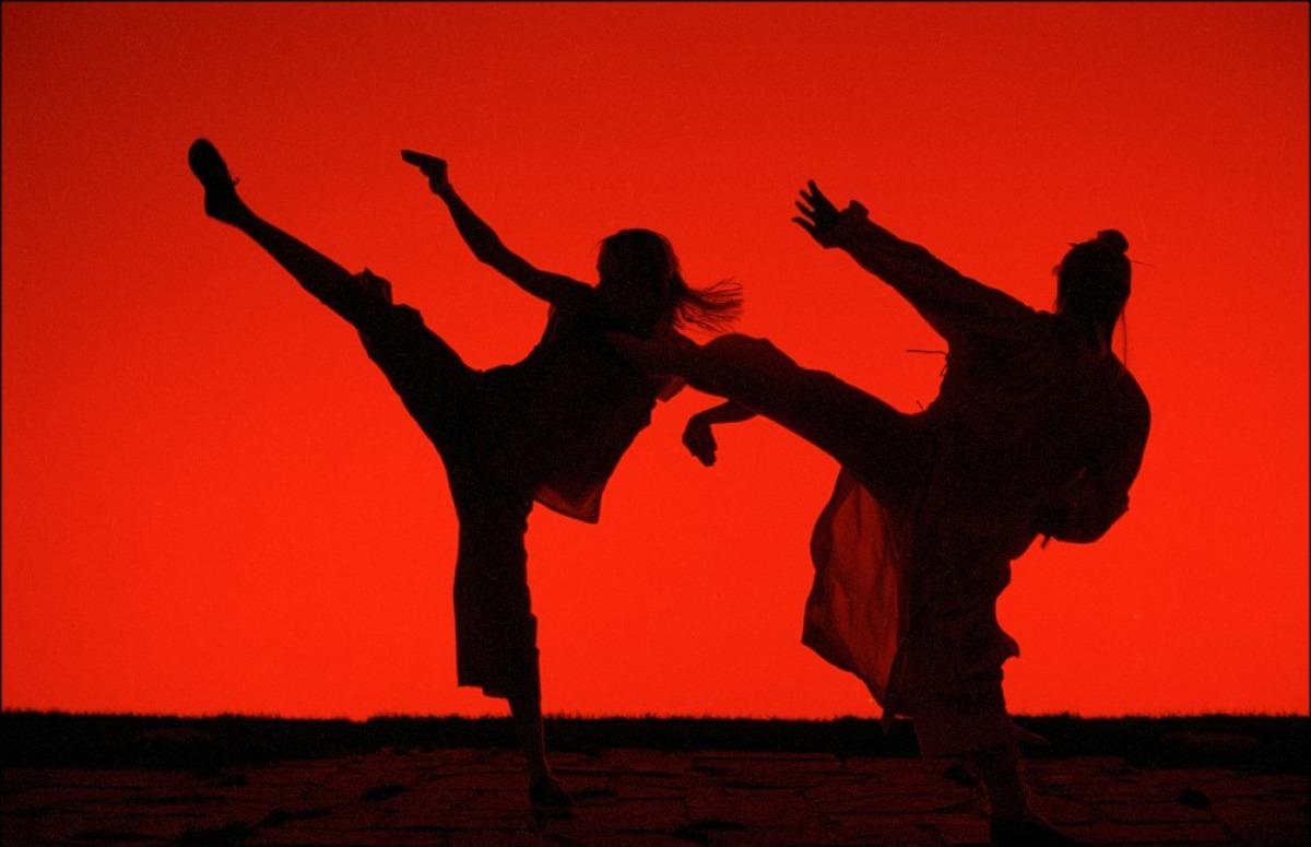 Weekend roundtable favorite martial arts movies high def digest