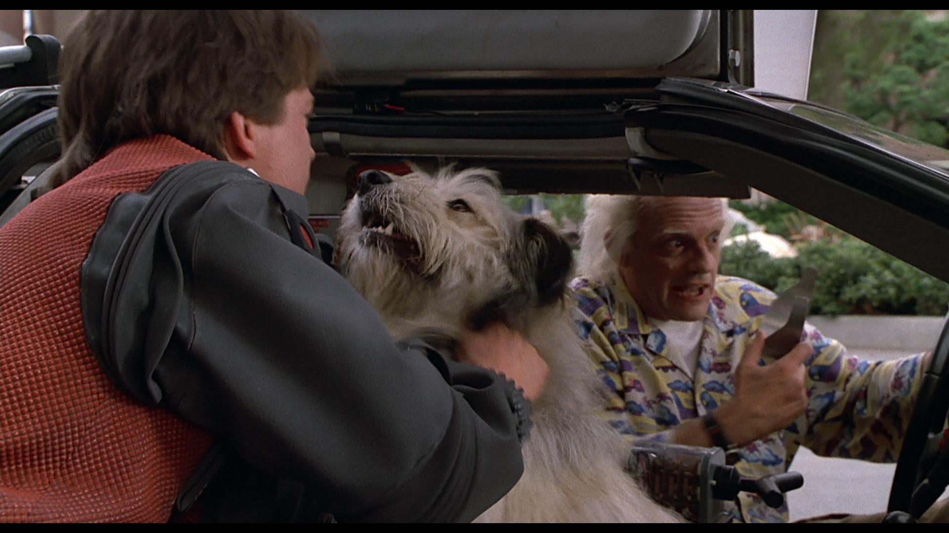 BTTF2 - Suspended Animation Kennel