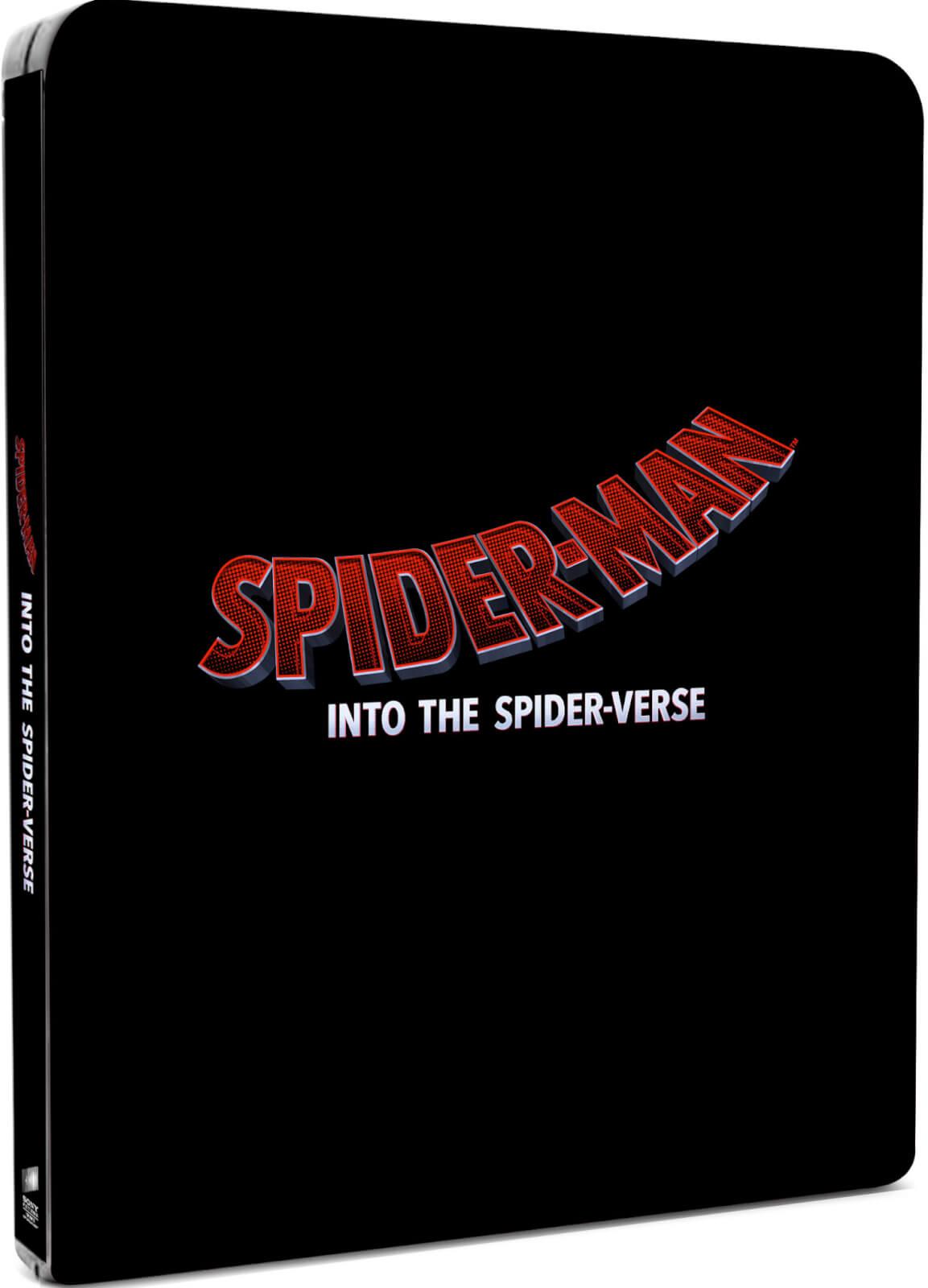 Spider-Man: Into the Spider-Verse SteelBook temp art